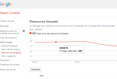 webmaster tool ressource bloquees